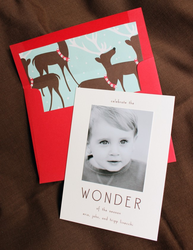 5_wonder 3