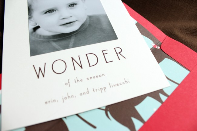 4_wonder new